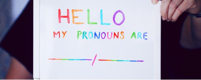 Plain not Puzzling: The Principality of Pronouns